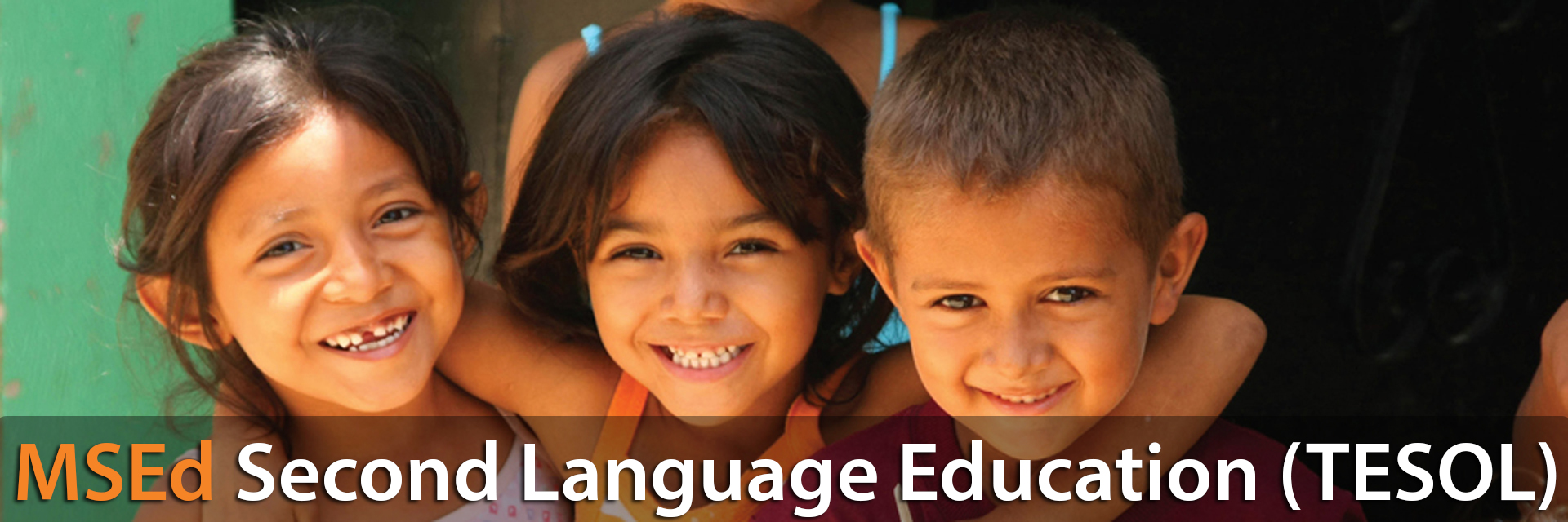 MSEd Second Language Education (TESOL)