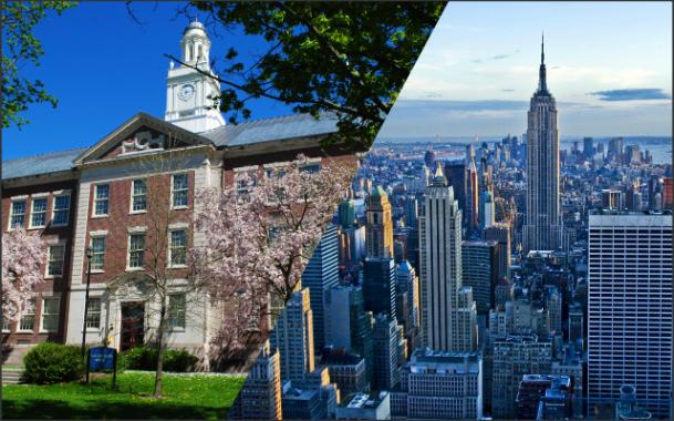 collage SUNY & NYC